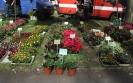 Targi Ogrodnicze w Opatówku_15